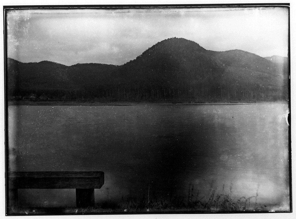 作品画像:広沢池