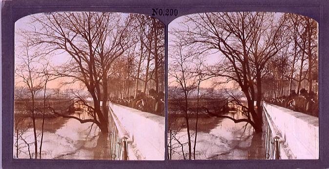 作品画像:パリ、大洪水(一)(1910年1月)(No.299)
