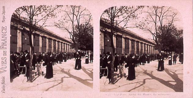 作品画像:外国製ステレオ写真集 Paris,Jardin de Plantes.La menagerie