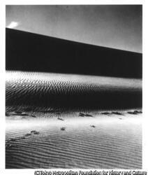 作品画像:砂丘
