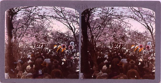 作品画像:向島の花見(No.410)