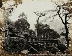作品画像:日本貴族の墓地