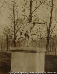 作品画像:チュイルリー公園の彫刻