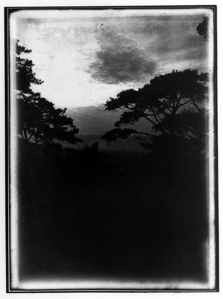 作品画像:松と空