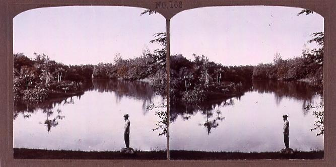 作品画像:暹羅国公園(No.163)