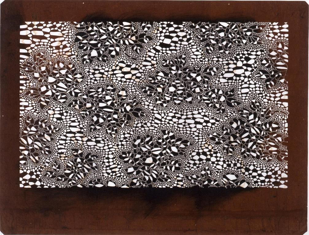 作品画像:長板中形型紙 地白 ぼたん(小判 追掛)