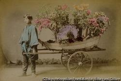 作品画像:(花を積んだリヤカーと男性)