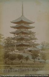 作品画像:奈良 興福寺