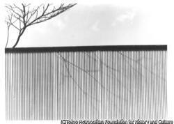 作品画像:トタン塀