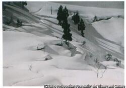 作品画像:雪国風景