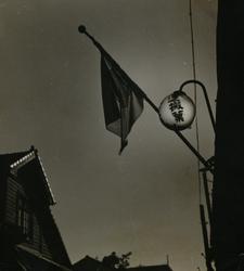 作品画像:(旗と家)