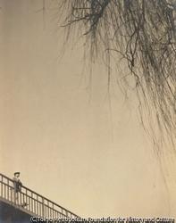作品画像:橋の上