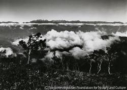 作品画像:美ヶ原から北アルプスを望む