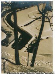 作品画像:雪景