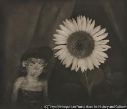作品画像:向日葵と人形
