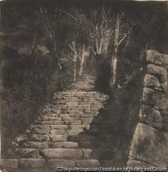 作品画像:(石の階段)