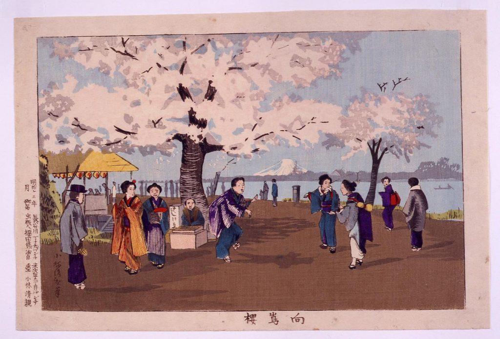 作品画像:向島桜