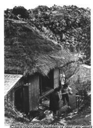 作品画像:梅崎春生『桜島』黒神部落の農家