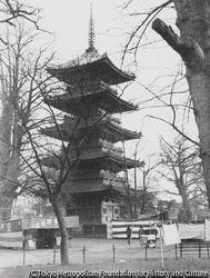 作品画像:浅草寺五重の塔