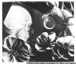 作品画像:髑髏と花