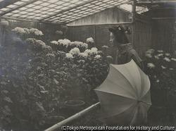 作品画像:(傘をさす女性と菊花)