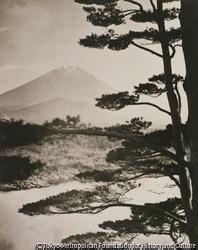 作品画像:富士山の遠景