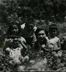 作品画像:咲き出したバラの花の前でお別れの記念写真