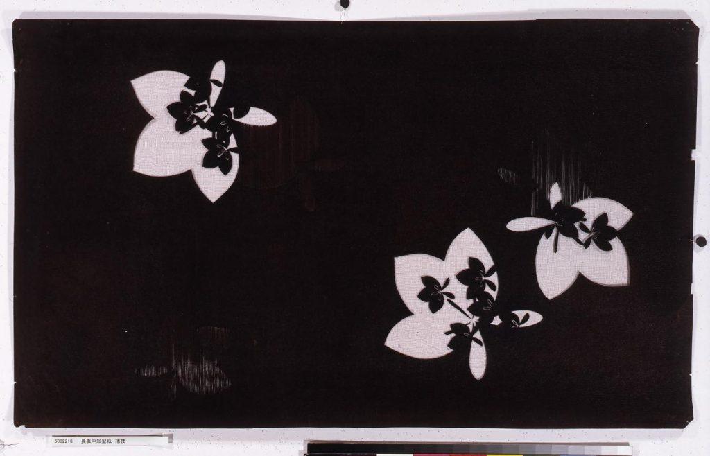 作品画像:長板中形型紙 桔梗