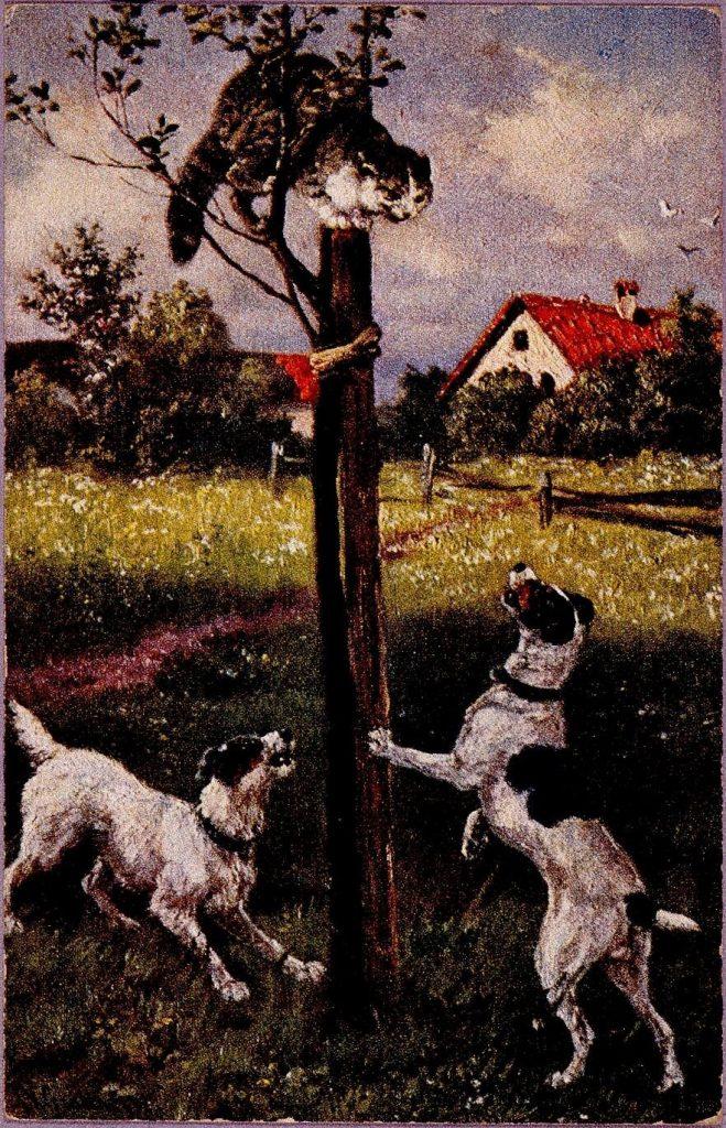 作品画像:外国製絵葉書(犬と猫)