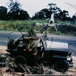 作品画像:待ち伏せにあって殺された政府軍兵士の遺体