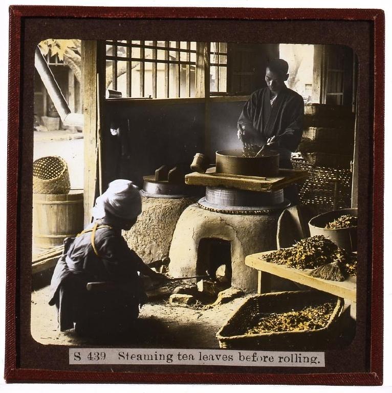 作品画像:製茶・蒸し工程