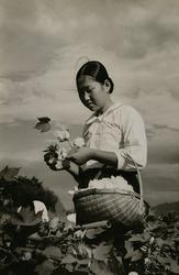 作品画像:「朝鮮の花嫁学校生徒の生活画報」より