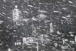 作品画像:(雪の夜の街)