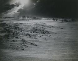作品画像:砂丘の吹雪
