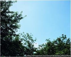 作品画像:白い鳩・終戦記念日・靖国神社