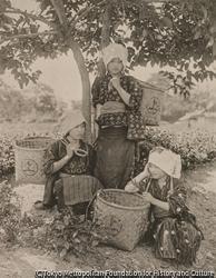 作品画像:宇治の茶摘み