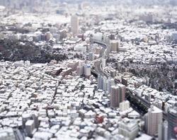 作品画像:東京 日本 2006