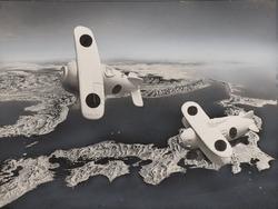 作品画像:張り子の空軍
