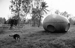 作品画像:ナブア森の犬と宇宙船、2008年