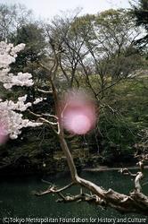 作品画像:新宿区、東京