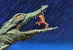 作品画像:蛙の算術