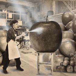 作品画像:(リンゴの色づけ)