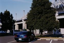 作品画像:ブルーの車と木 東京