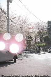 作品画像:港区、東京