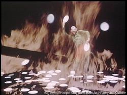 作品画像:At Any Place 4:ヨネヤマ・ママコ作「主婦のタンゴ」より