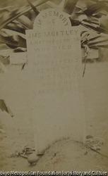 作品画像:題不詳(IN MEMORY OF JMS MOITLEY墓石)