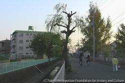 作品画像:伊丹 2009年 冬‐2010年 春