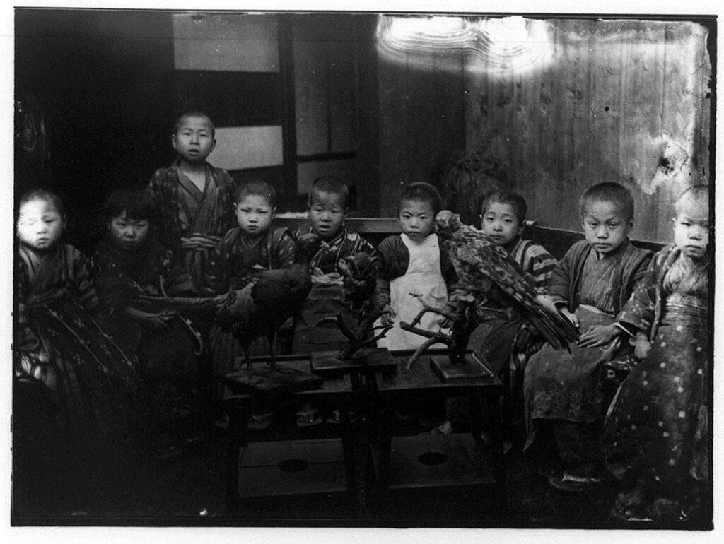 作品画像:鳥の剥製と平安徳義会孤児院生