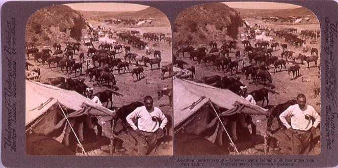 作品画像:AwaitingAnotherAssault―Japanese camp behindA hill four miles from PortArthur.