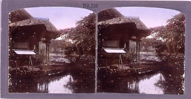 作品画像:井の頭弁財天(No.239)